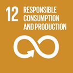 12. Ensure sustainable consumption and production patterns